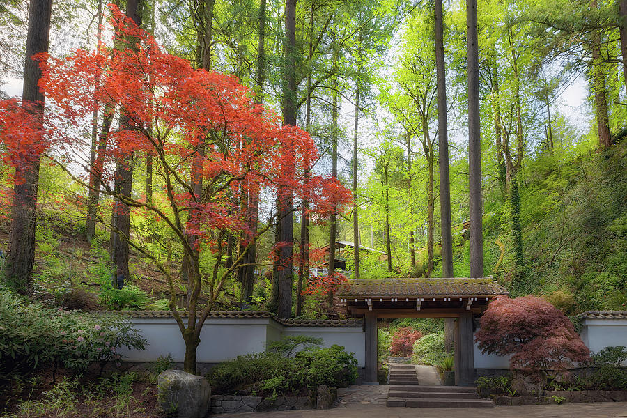 Portland Photograph - Gateway To Portland Japanese Garden by David Gn