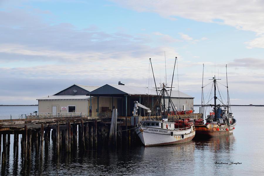 Golden Dolphin Eel Fishing Boat Port Angeles Washington Painting Photograph