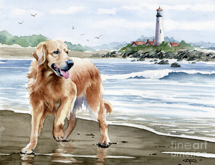 Golden Painting - Golden Retriever at the Beach by David Rogers