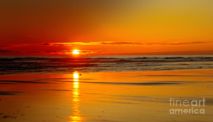 Seascape Photograph - Golden Sunset by Robert Bales