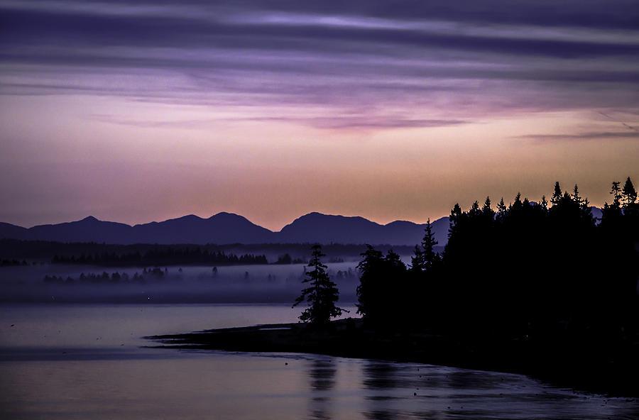 Washington Photograph - Good Morning by Blanca Braun
