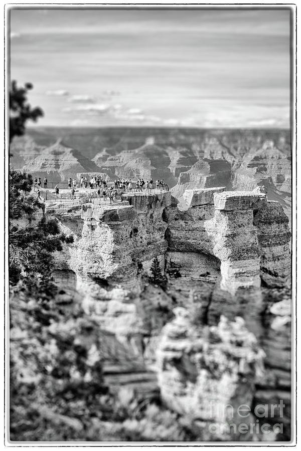 Grand Canyon Unique Perspective Photograph