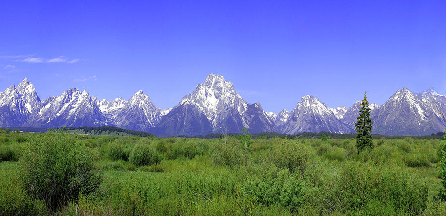 Grand Teton Mountains Photograph - Grand Tetons Panorama by Mary Gaines
