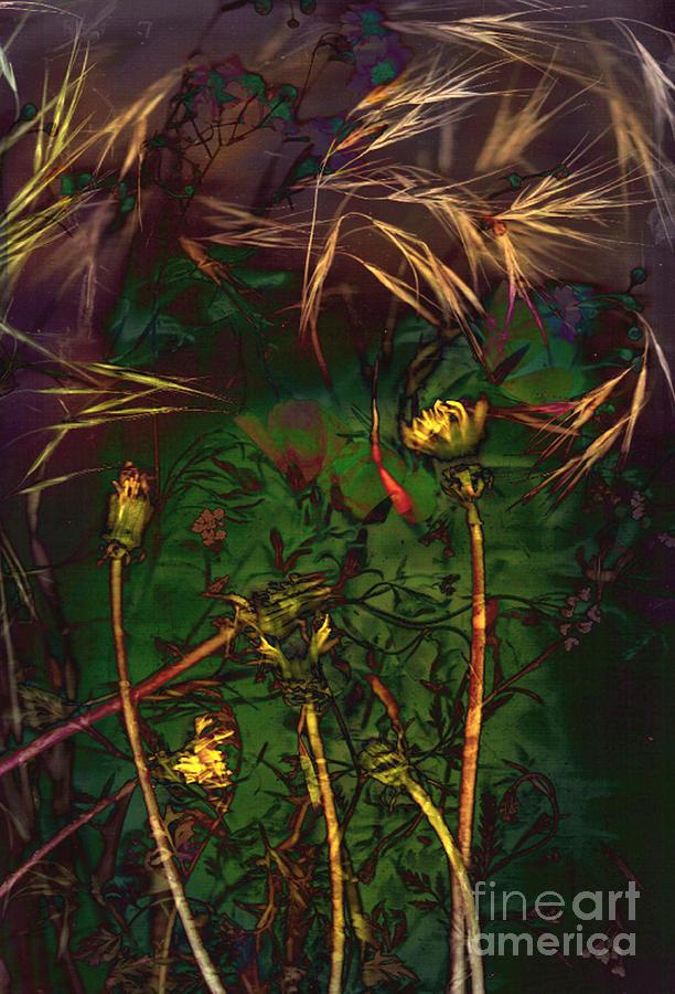 Wild Mixed Media - Grasslands Series No. 5 by Vinson Krehbiel