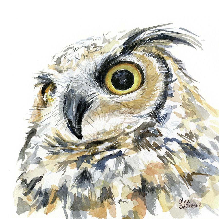 Owl Painting - Great Horned Owl Watercolor by Olga Shvartsur