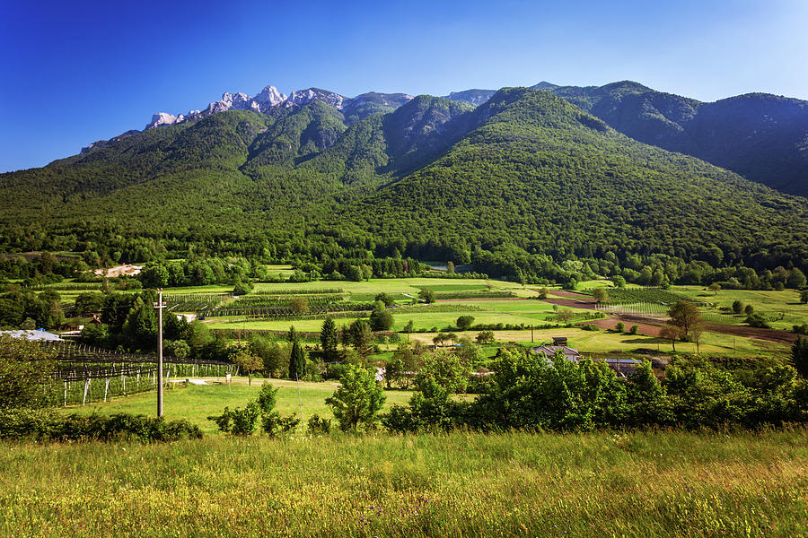 Green Alpine Landscape In Trento Photograph