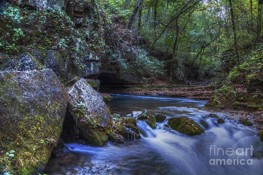 2014 Photograph - Greer Springs by Larry Braun