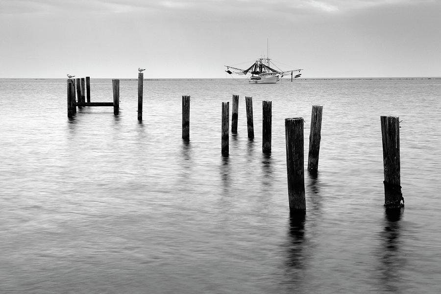Gulf Coast by Eric Foltz