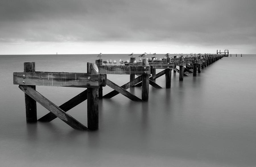 Gulf Coast Pier by Eric Foltz
