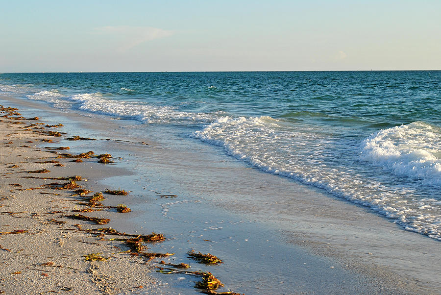 Beach Photograph - Gulf Of Mexico Beach by Steven Scott