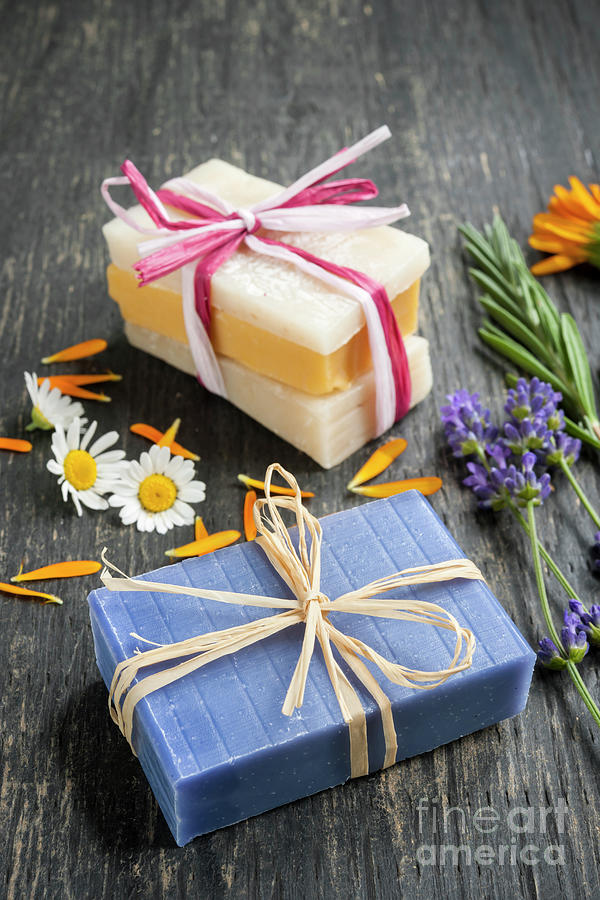 Soaps Photograph - Handmade Soaps With Herbs by Elena Elisseeva