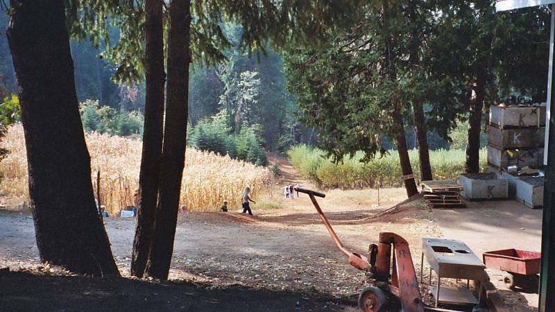 Landscape Photograph - Harvest Time At Apple Hill by Dawn Marie Black