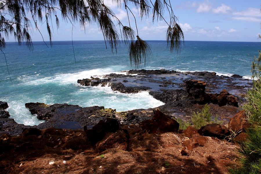 Spouting Photograph - Hawaiian snapshot by Annie Babineau