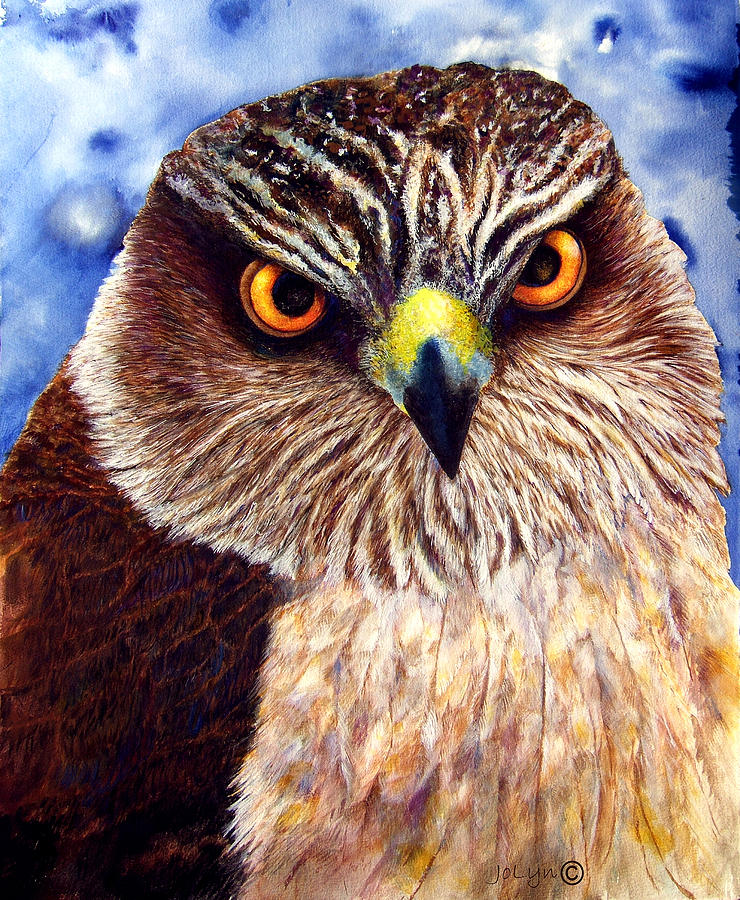 Eyes Painting - Hawkeyes by JoLyn Holladay