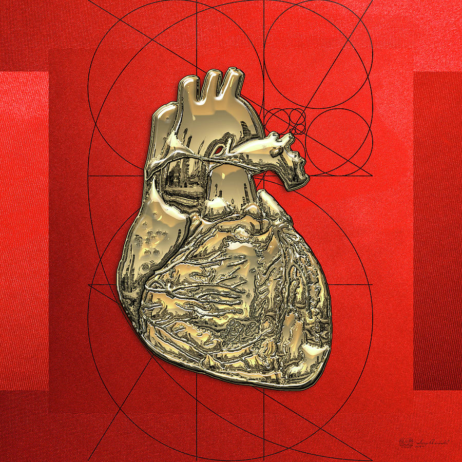 Human Heart 3d Photograph - Heart Of Gold - Golden Human Heart On Red Canvas by Serge Averbukh