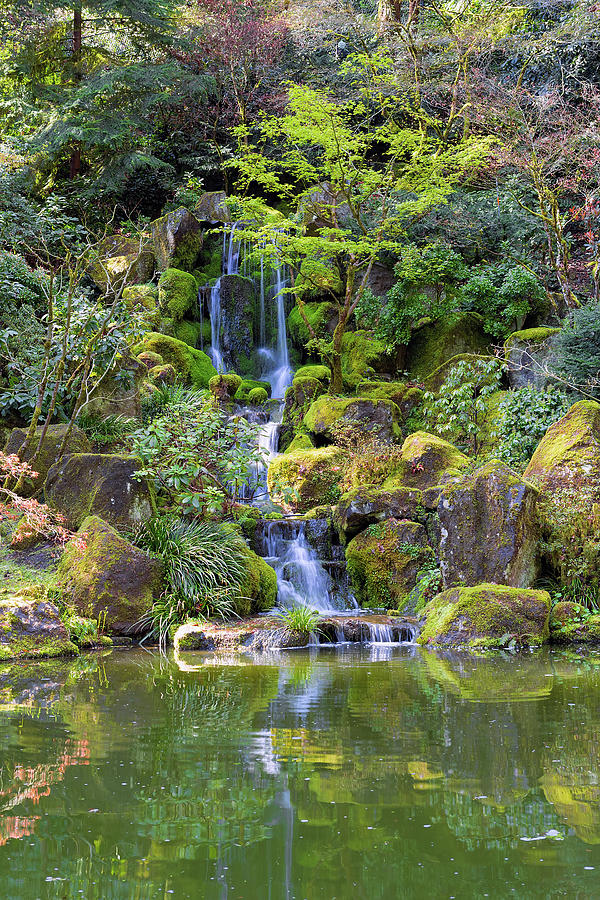 Waterfall Photograph - Heavenly Falls In Spring by David Gn