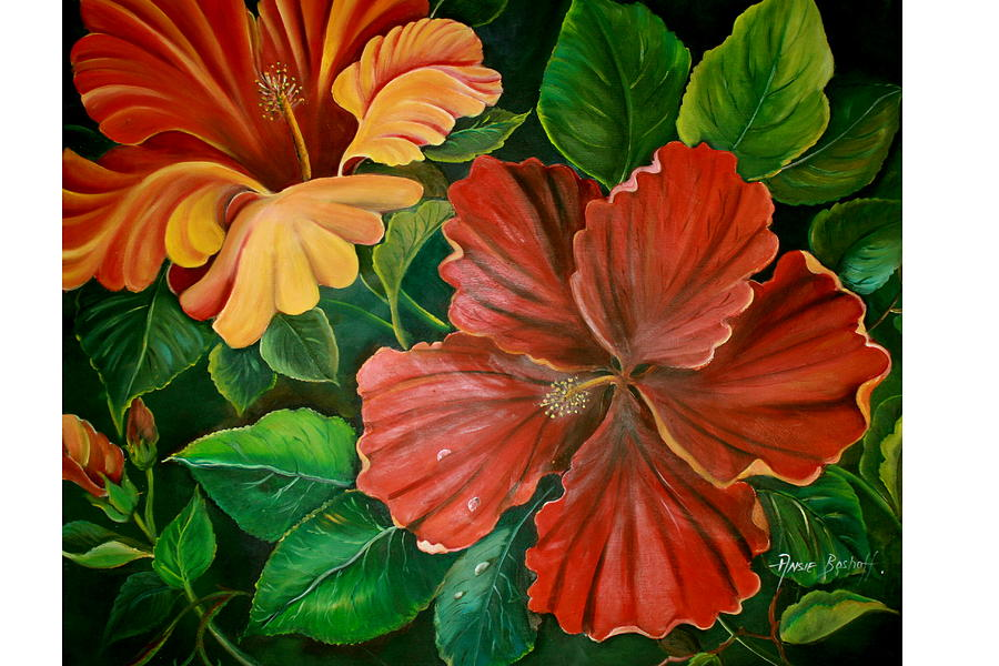 Hibiscus Painting by Ansie Boshoff
