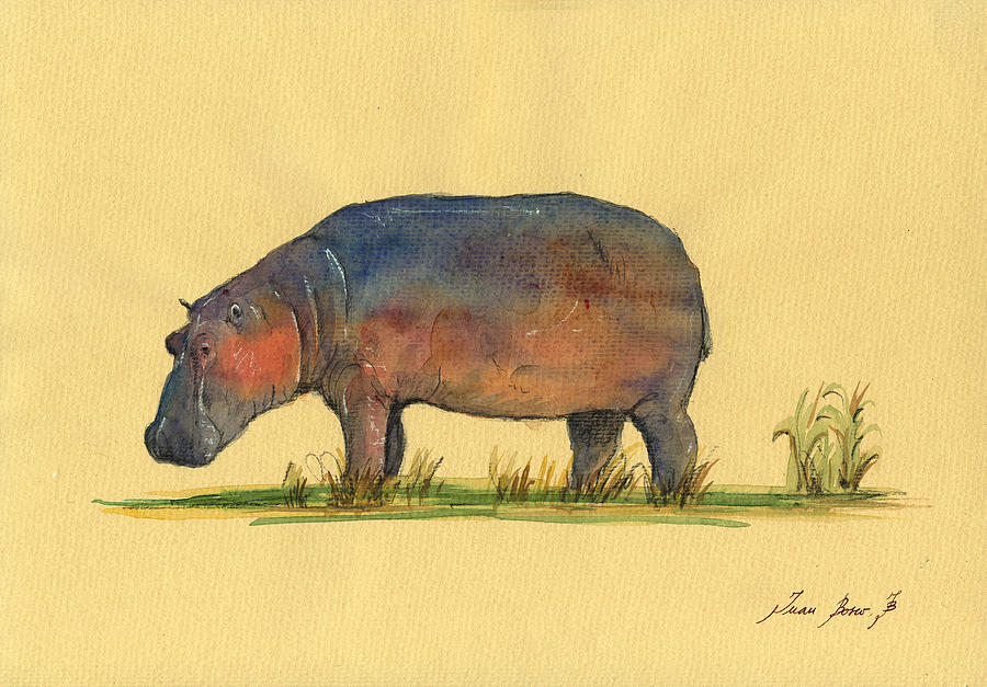 Hippo Watercolor Painting Painting by Juan Bosco