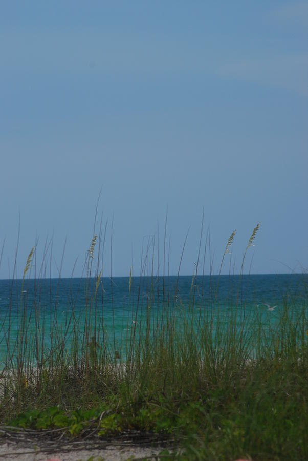 Landscape Photograph - Holmes Beach Florida 2 by Lisa Gabrius