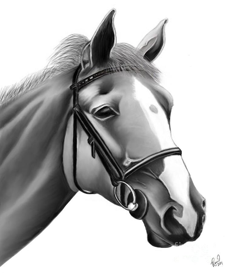 Horse by Rand Herron