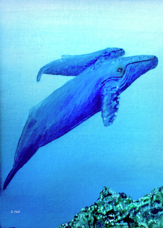Humpback Mother Whale And Calf #21 Painting by Donald k Hall