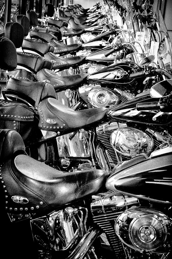 Harley Davidson Photograph - Ill Have A Dozen Harleys To Go Please by David Patterson