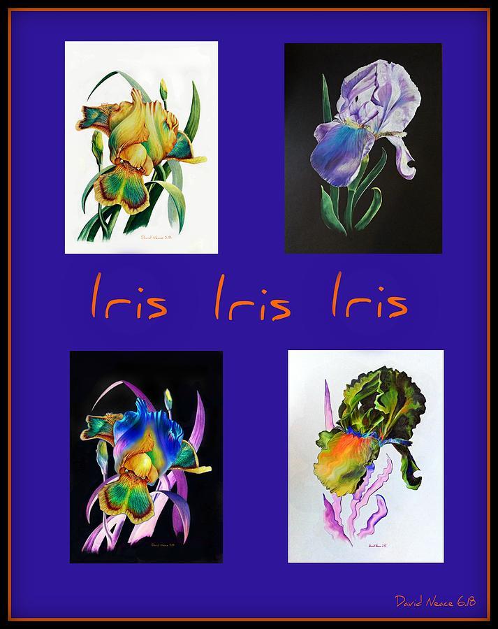 Iris by David Neace