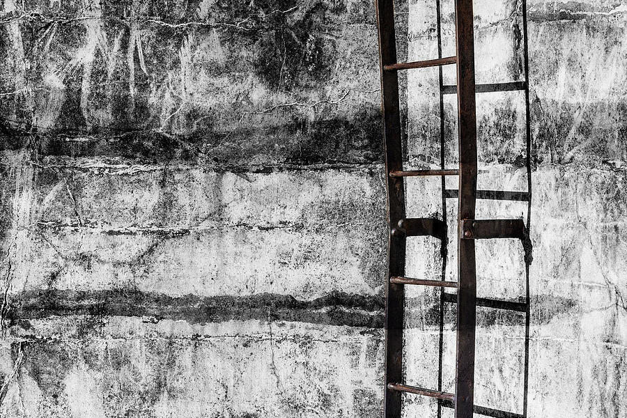 Coastal Fortifications Mixed Media - Iron Ladder by Carol Leigh