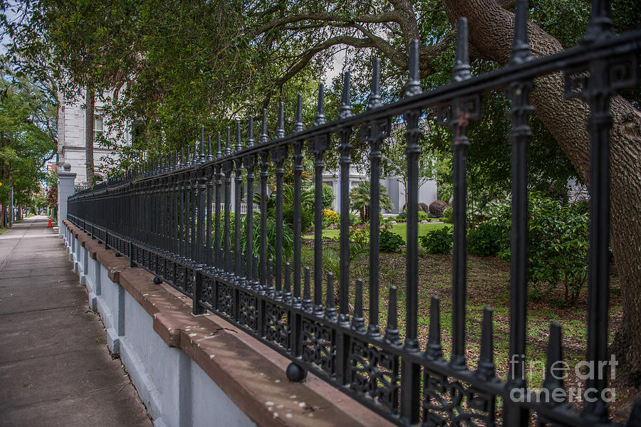 Iron Gates Of Charleston Photograph