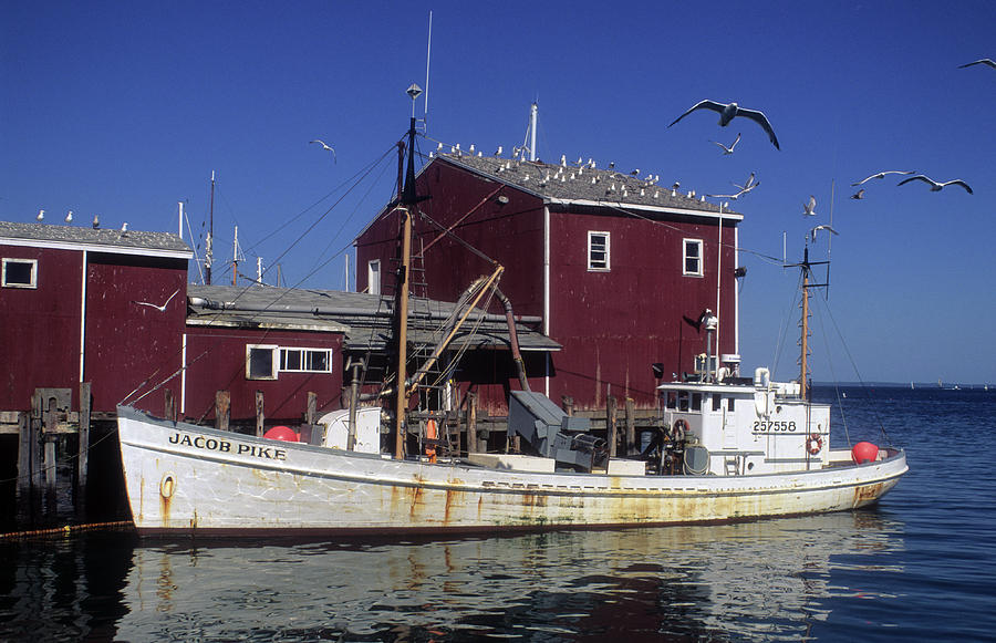 Fishing Boat Photograph - Jacob Pike Fishing Boat In Maine by Carl Purcell
