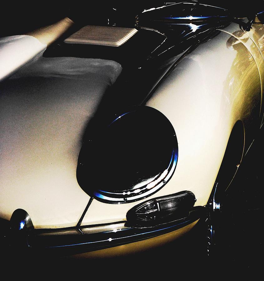 White Jaguar Photograph - Jaguar In The Night by Angela Davies