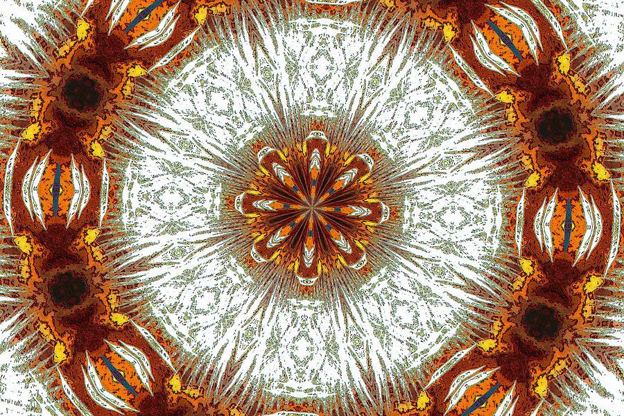 Kaleidoscope Photograph