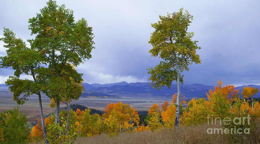 Fall Photograph - Kenosha Pass by Barbara Schultheis