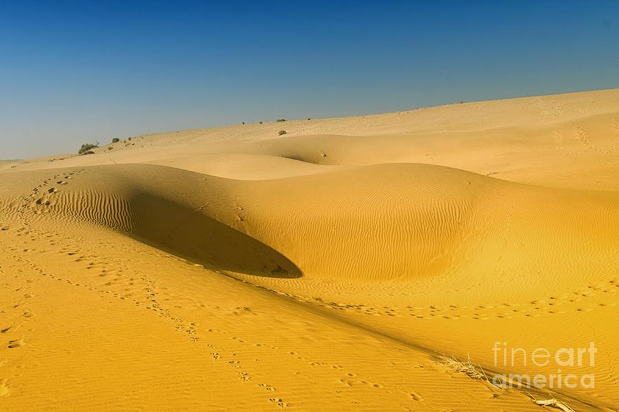 Khuri Desert by Yew Kwang