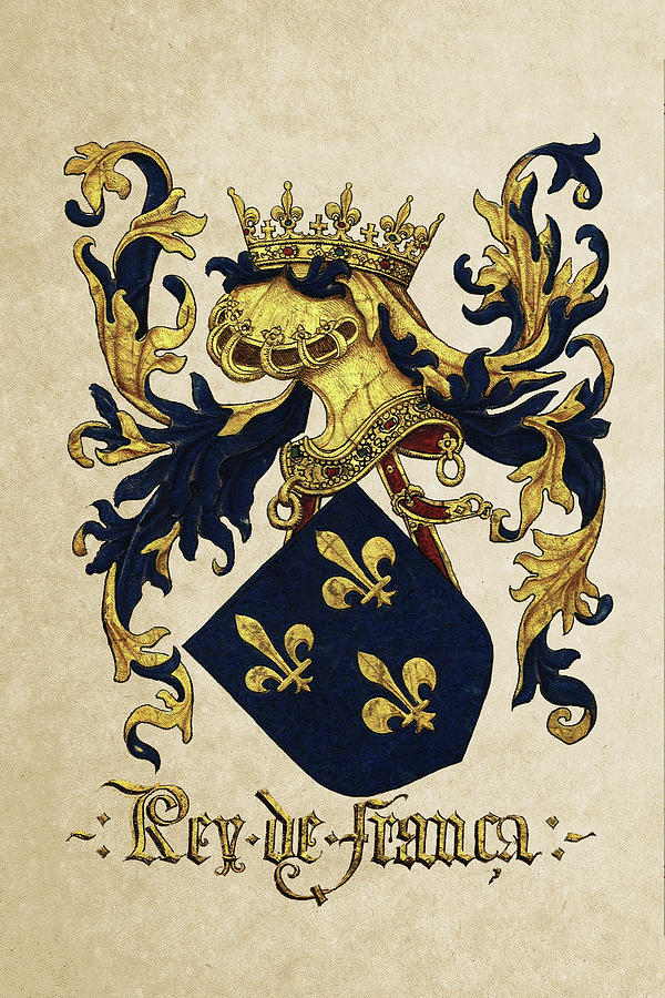 Heraldic Photograph - King Of France Coat Of Arms - Livro Do Armeiro-mor  by Serge Averbukh