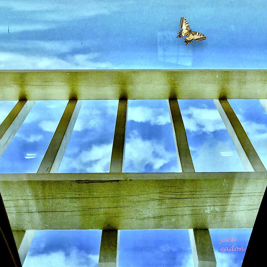 Sky Photograph - kingdom of Sky by Jack Eadon