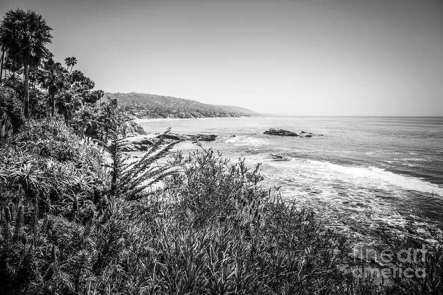 Laguna Beach California Black And White Picture Photograph