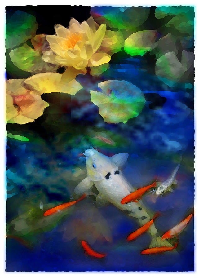 Koi Photograph - Last rays of the sun by Gina Signore