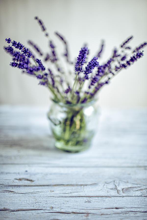 Lavender Still Life Photograph