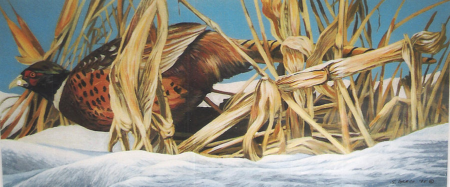 Wildlife Painting - Layin Low by Steve Greco
