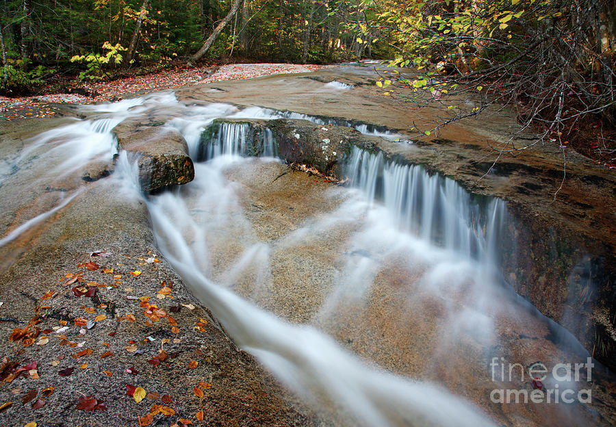 Attraction Photograph - Ledge Brook - White Mountains New Hampshire Usa by Erin Paul Donovan