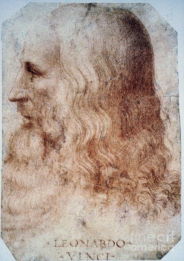 16th Century Photograph - Leonardo Da Vinci by Granger