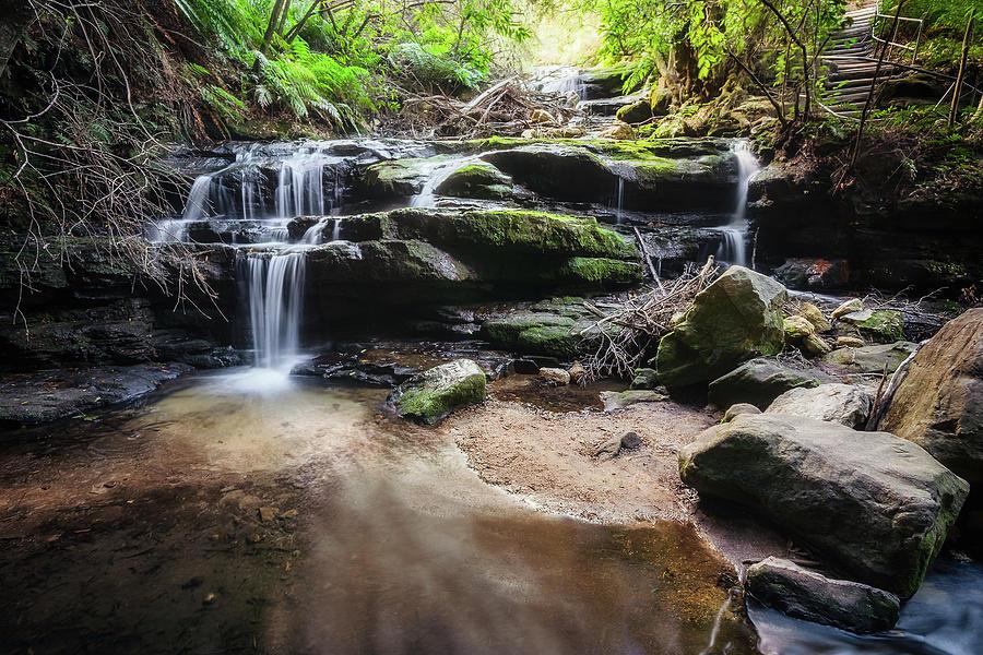 Australia Photograph - Leura Cascades - Blue Mountains, Australia. by Daniela Constantinescu