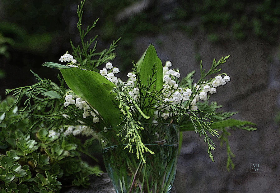 Lilies of the Valley by Yvonne Wright