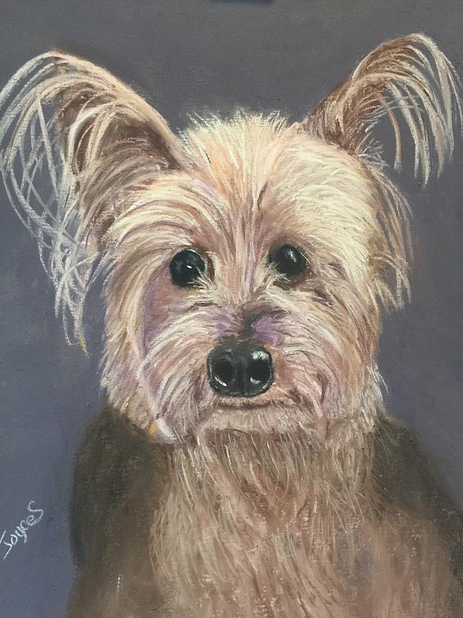 LILY by Joyce Spencer