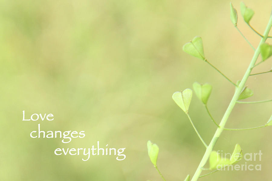Love Changes Everything by Agnieszka Ledwon