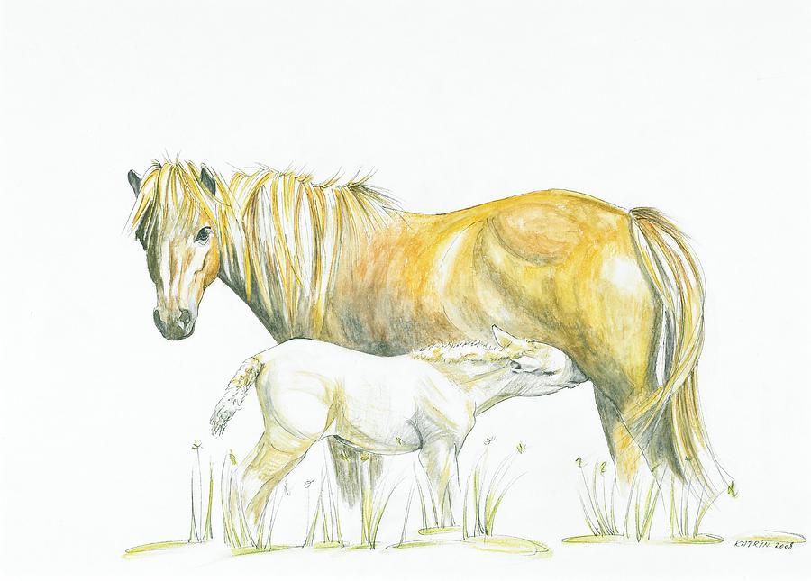 Icelandic Horses Drawing - Loving Care by Katrin J Oskarsdottir