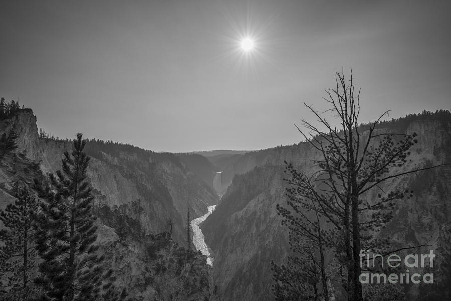 Yellowstone Photograph - Lower Yellowstone Falls  by Michael Ver Sprill