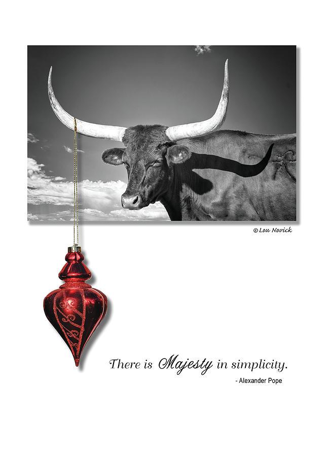 Majesty in simplicity by Lou Novick