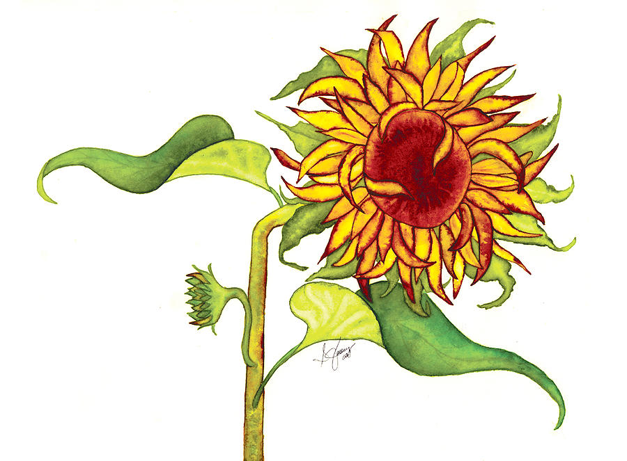 Floral Painting - Maris Sunflower by Stephanie  Jolley